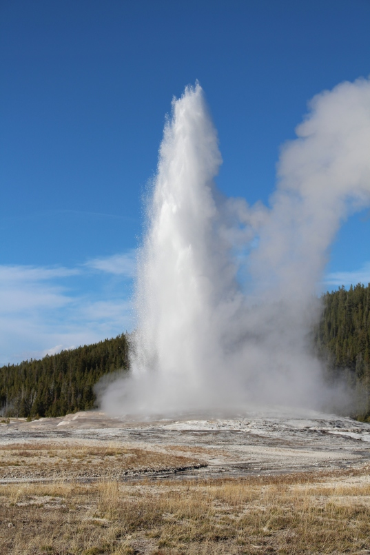 most famous attraction at Yellowstone, Old Faithful Geyser erupting as usual. About every 90 minutes.