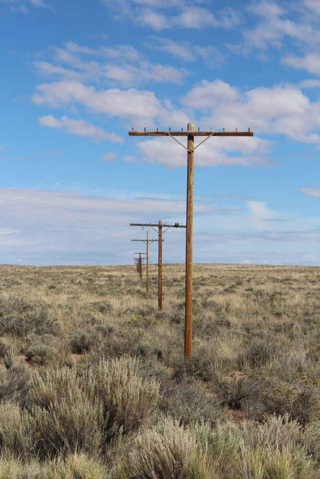 old Route 66 poles