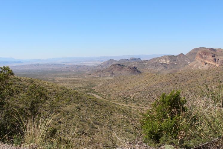 Texas Desert, most of the park is Desert.