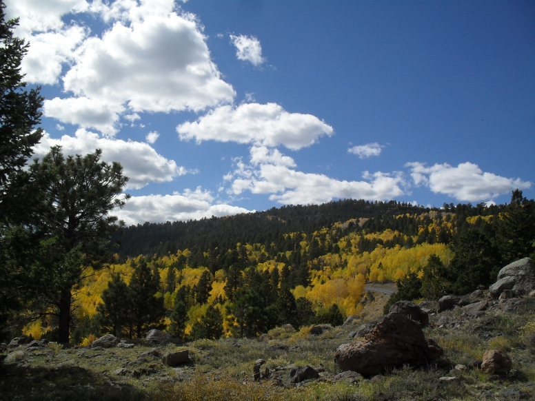 Amazing fall colors