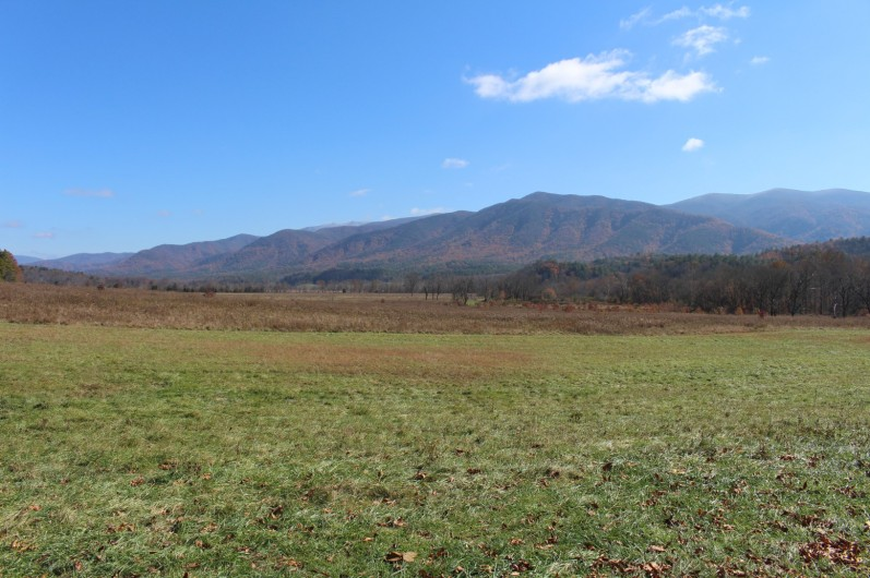 View from Cades Cove (bottom)