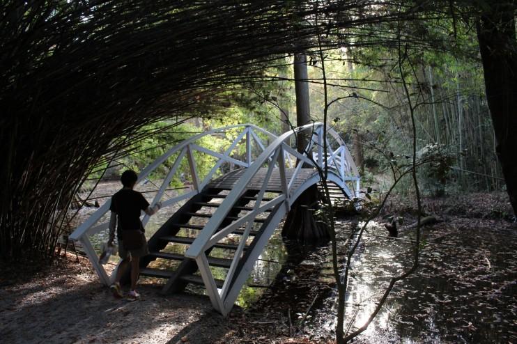 Cool bridge in the Bamboo Garden