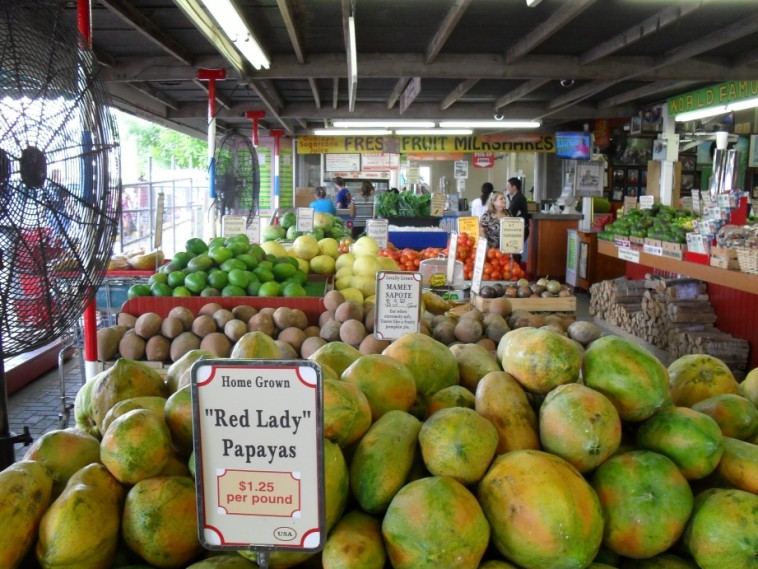 On the way out of Everglades, we checked out a fruit stand.