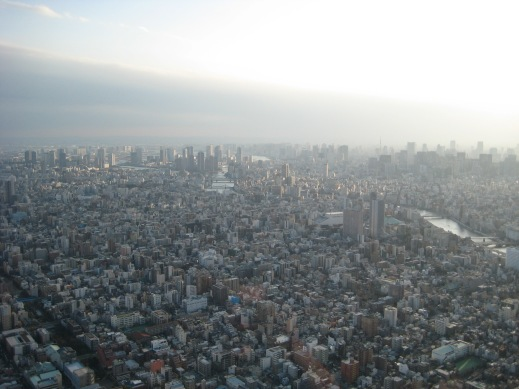 You can really appreciate how big Tokyo is from up here.