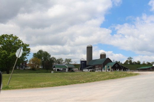 Dairy Farm. Ontario and Quebec produce about 70 percent of Canada's Milk.