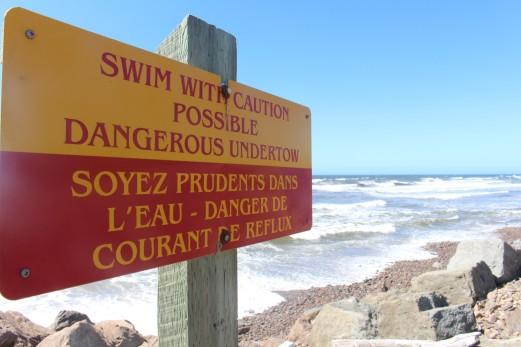 Anyone who swims here needs a head examination.